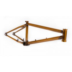 S&M CCR CREDENCE 21.25 AMBER ALE FRAME TRANS GOLD CLINT REYNOLDS